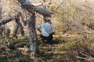 Investigators search for evidence near where McNelly and Stewart's remains were found.